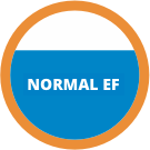 Normal EF Icon